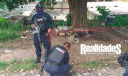 Encuentran sin vida a hombre de la tercera edad en Escuadrón de la Muerte
